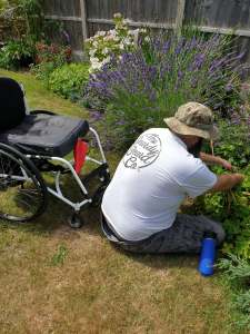 Wheelchair user sat on grass weeding a border