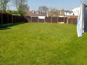 Our garden 7 years ago. Just grass except for a tiny border on the left that was very unloved.