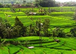 10 Foto Keindahan Alam Indonesia yang Harus Kamu Ketahui
