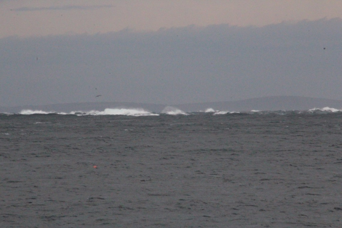 Pentland Firth looking a bit spicy
