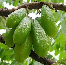 Bilombo Fruits