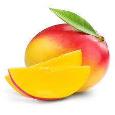 apple mango tree plant