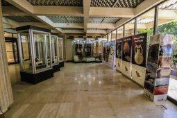 Tayma Museum (photo: Florent Egal)