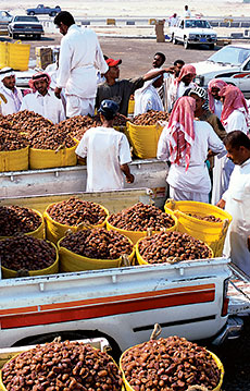 Saudi donations of dates in 2002 totaled nearly 800,000 metric tons.