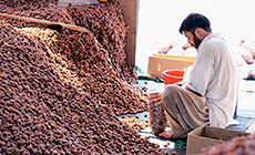 A worker bags khlas dates in the packing shed at the al-Hasa date market.