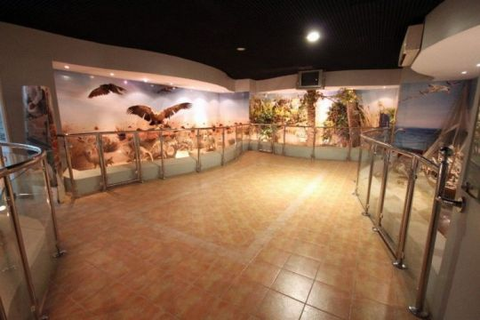 متحف الكناني -The Kanani Heritage Museum