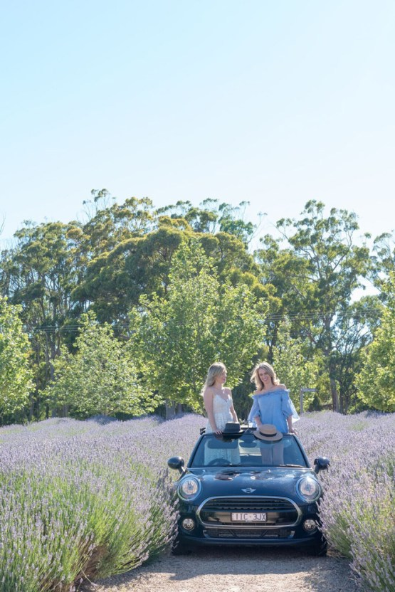 adventures_of_2_girls_in_a_mini_lavender2