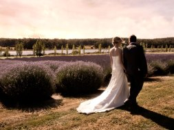 sault-weddings-gallery-autumn-04