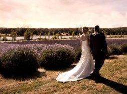 sault-weddings-gallery-autumn-04