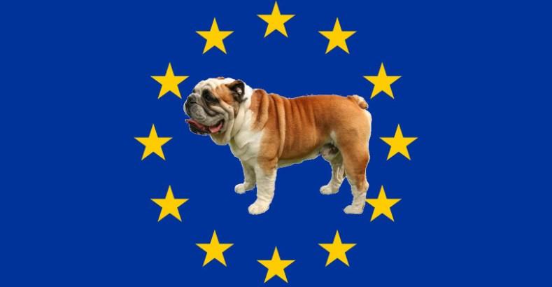Gardons Nos Anglais Sauvons L Europe