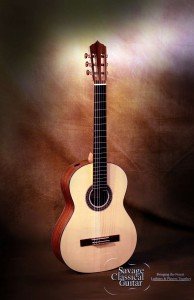 Classical Guitar by Larry Breslin