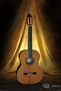 David Daily Classical Guitar #536 Redwood with EIRW