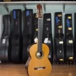 Giannis Paleodimopoulos Classical Guitar 2016 Cedar-CSA