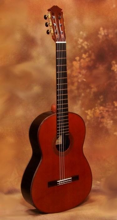 Darren Hippner Classical Guitar   Savage Classical Guitar