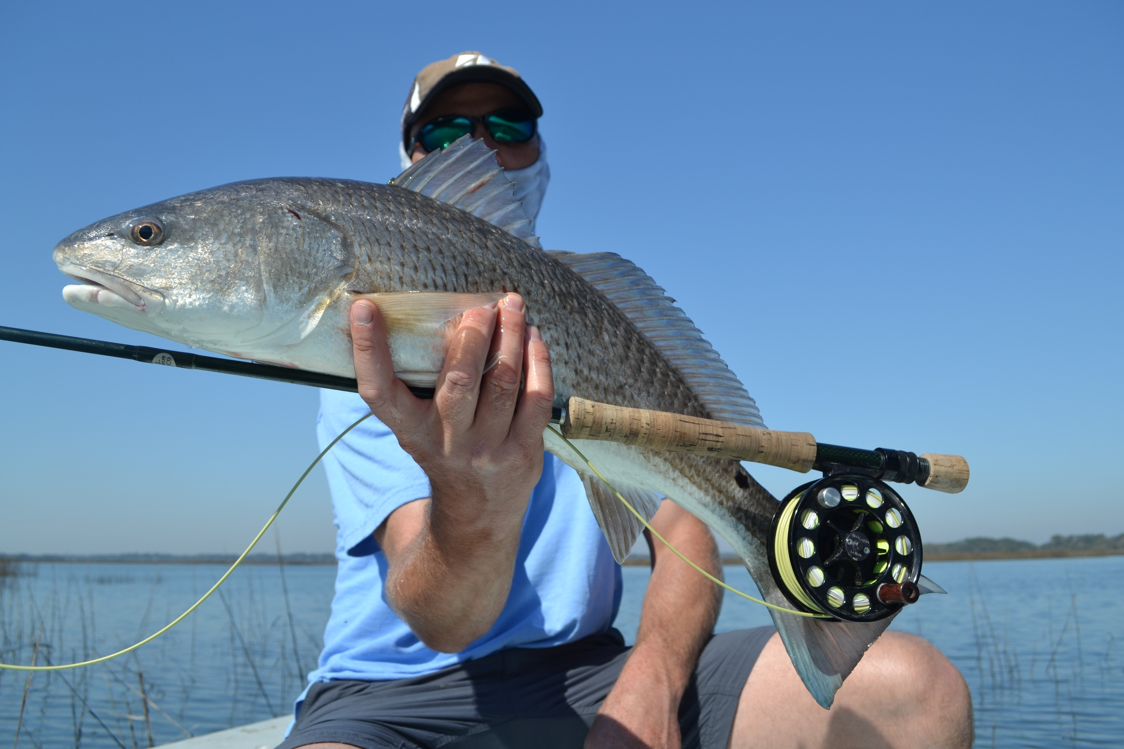 Hilton head fly fishing for Flying fish savannah ga