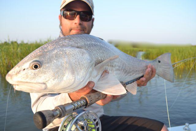 Savannah hilton head tybee fly and spin fishing any for Flying fish savannah ga