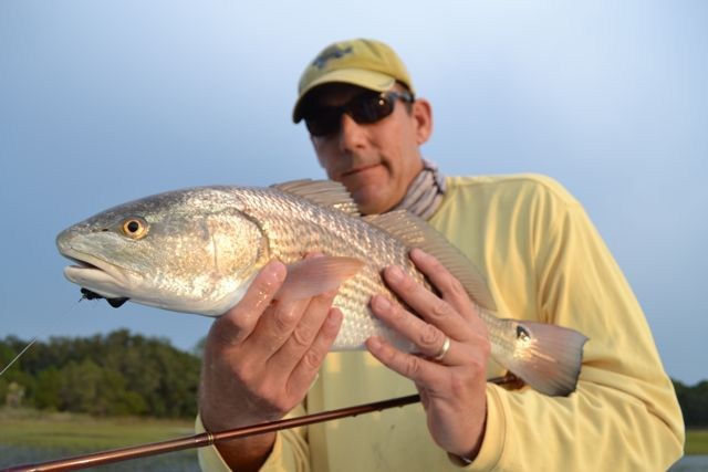 Savannah fly and light tackle fishing charters for Red fish hilton head