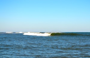 surf lessons Tybee Island