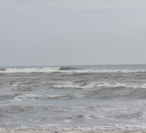 surfing georgia