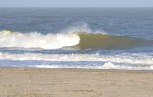 south swell 2