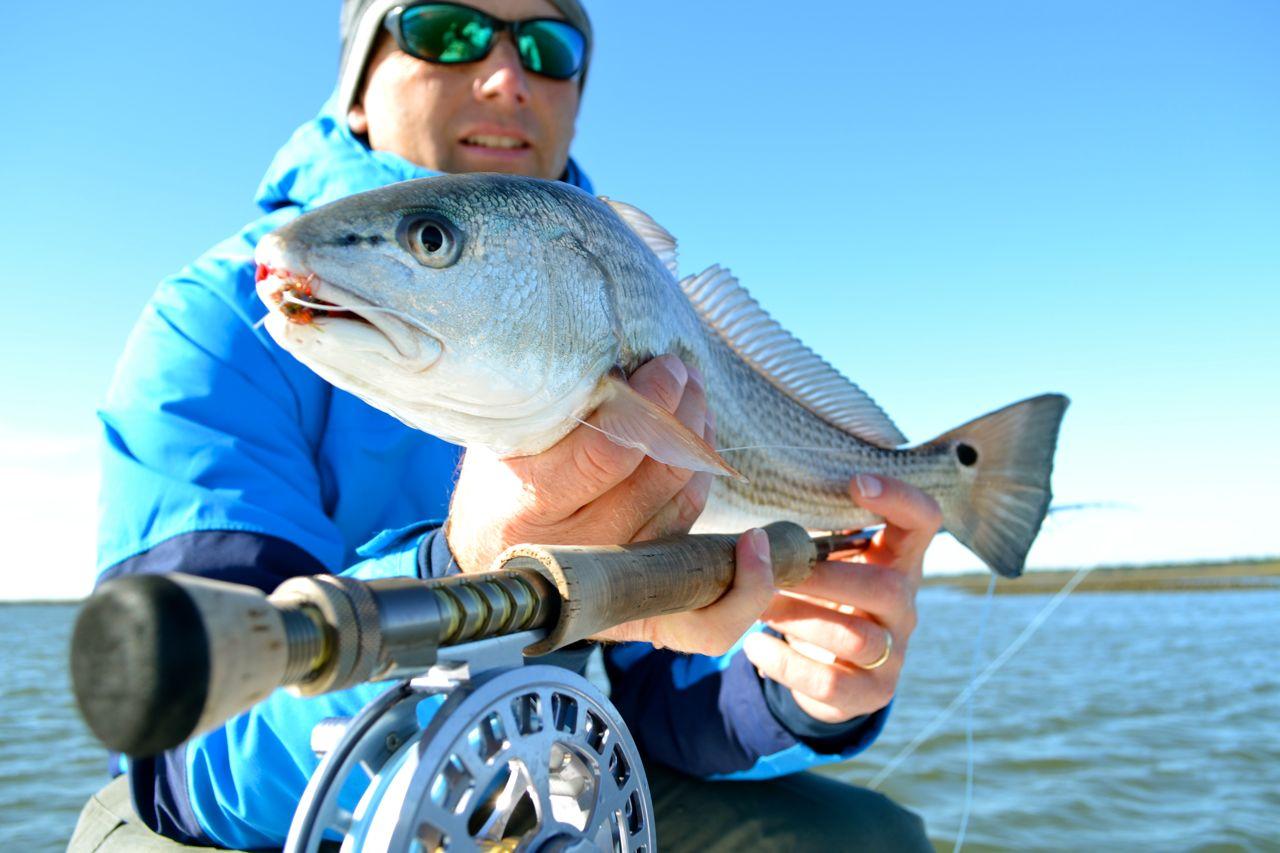 Savannah fly and light tackle for Fishing charters savannah ga