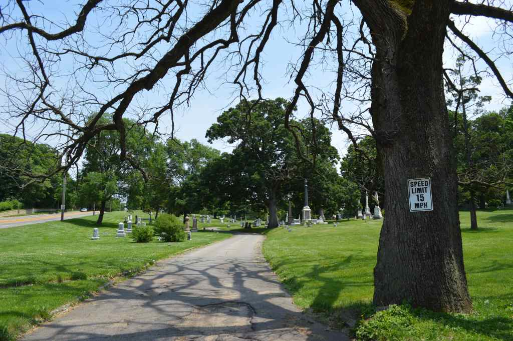 Board member Linda Langston said removing dead trees is one of the financial challenges facing Oak Hill Cemetery in Cedar Rapids, Iowa. (photo/Cindy Hadish)
