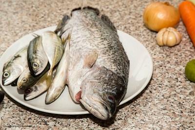 poissons save eat