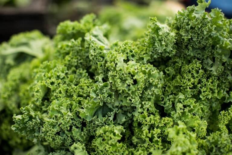 cuisiner le chou kale avec save eat