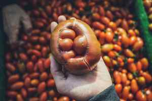 Impact esthétique alimentaire consommation