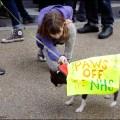 SLHC-#ourNHS-Demo-4Mar17-12-web