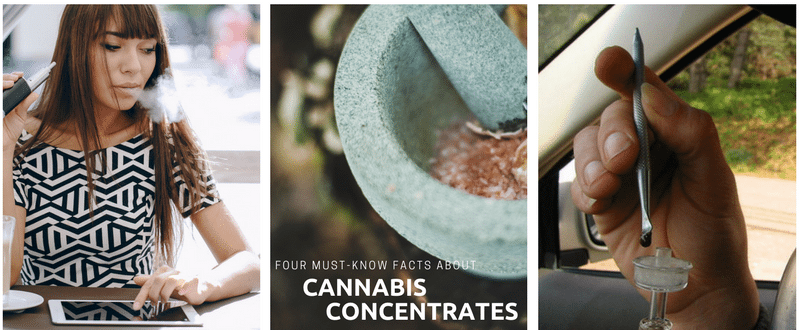 Learn About Cannabis Concentrates - Getting Started with Marijuana Concentrates - Vape Oil Online - CBD Oil - Dabbing - Shatter - RSO Oil - Hash Oil - Honey Oil - Cannabis Coupon Codes - Save On Cannabis Promo