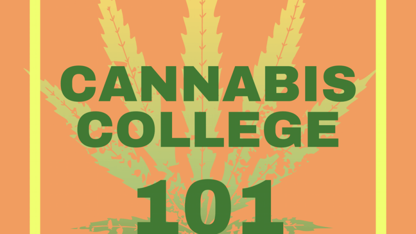 A marijuana leaf logo is displayed with the words CANNABIS COLLEGE 101""