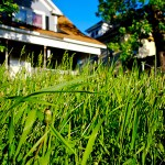 Becoming a Landlord: Part 6 – Maintaining Your Rental Property