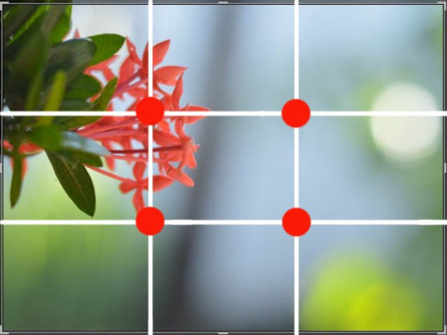 Komposisi Fotografi Rule of Thirds