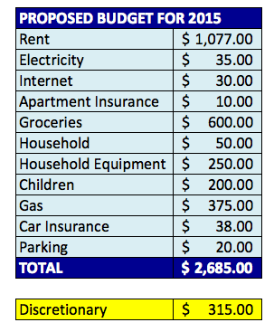 2014-Year-in-Review-Budget-Total-Expenses-Proposed-Budget-for-2015