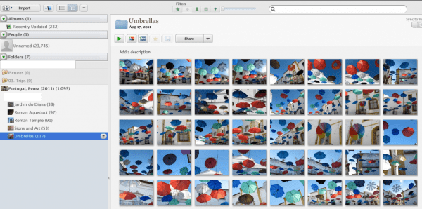 Organization-Organize-Organized-Picasa-Photos-Albums-Data-Online-Pictures-Originals-Dig-Deep