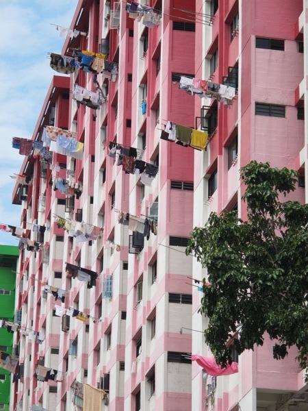 Photograph-Singapore-House-Home-Apartment-Living-Pink-Clothes-Line-Laundry