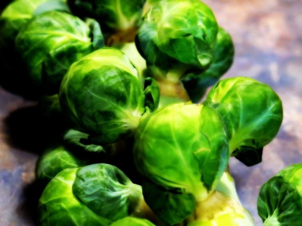 Travel-Photograph-Food-Eat-Vegetables-Brussel-Sprouts