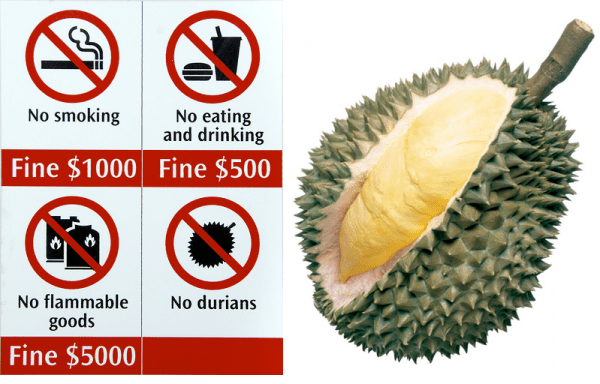 durian-banned-fruit-singapore-spiky