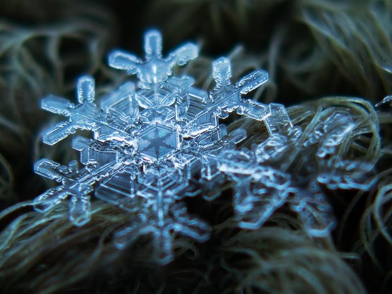 flocon neige 8 Images insolites : Flocon de neige