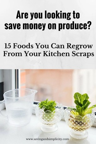 foods you can regrow from kitchen scraps