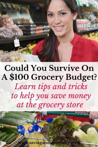 Could you survive on a $100 grocery budget? Or what about a $400 monthly grocery budget? Learn the tips and tricks to surviving well on less and saving money on groceries.
