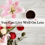 You Can Live Well On Less
