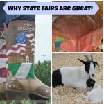 Why State Fairs are Great