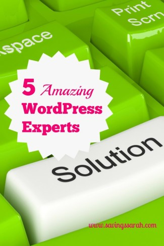 5 Amazing WordPress Experts