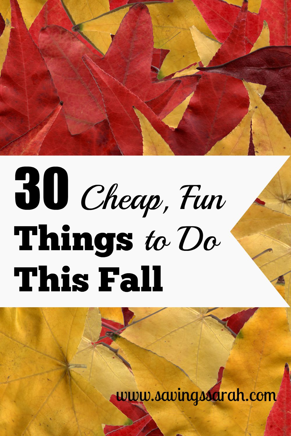 30 Cheap, Fun Things to Do This Fall - Earning and Saving with Sarah