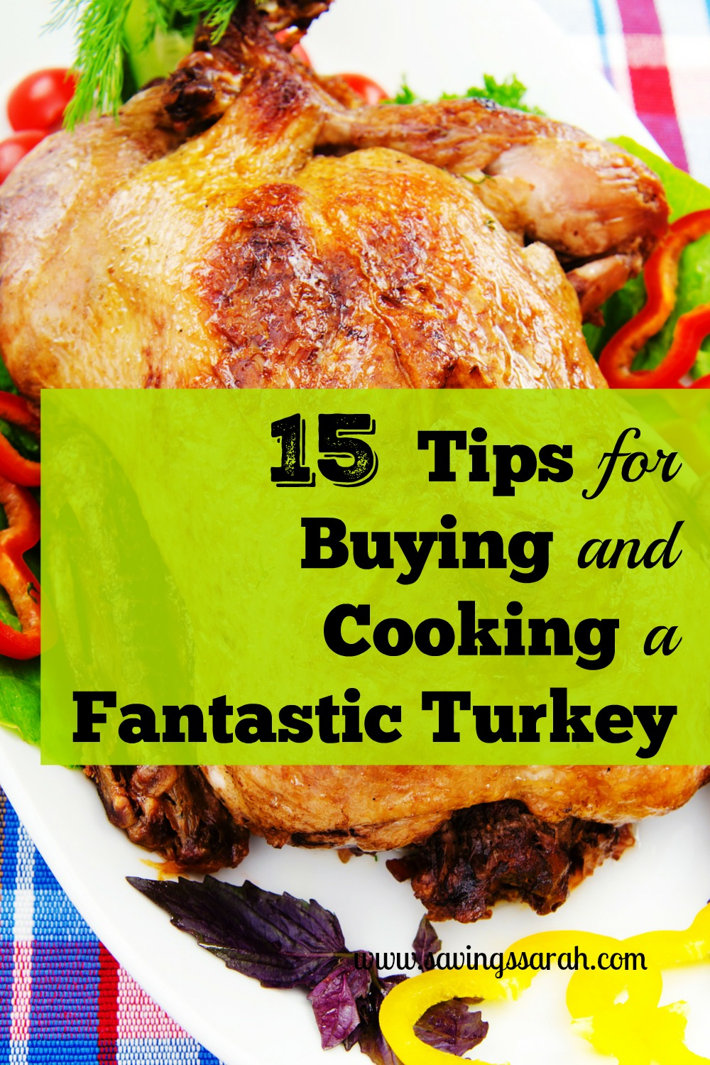 15 Terrific Free Tips for Cooking Your Turkey