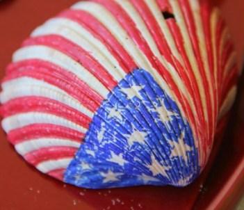 American Flag Seashell