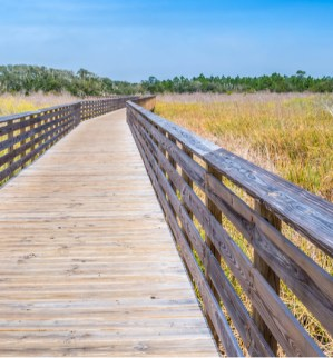 Gulf Shores Area Boardwalk