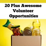 20 Plus Awesome Volunteer Opportunities